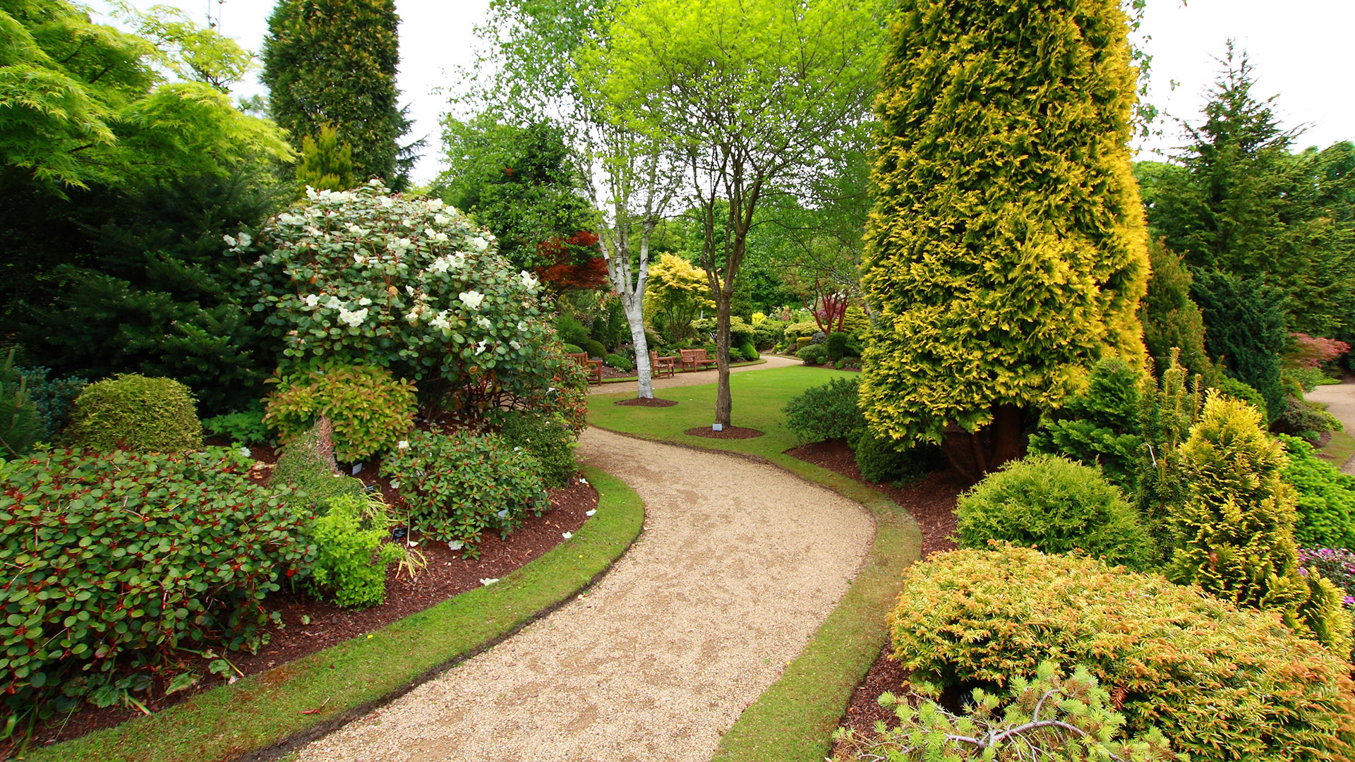 Mckinney Landscaping: Irrigation, Landscaping and Landscape ...